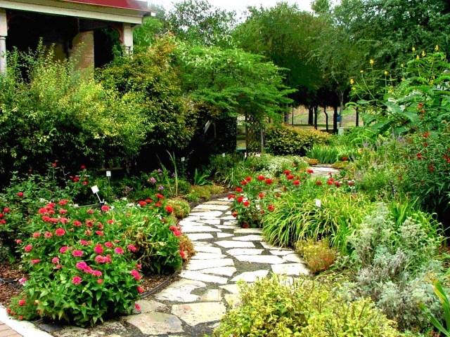 Jardim-orgânico.jpg